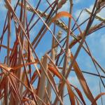 Das Wachstumsdilemma der Biobranche